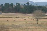 Paisaje del Area Rural del Municipio