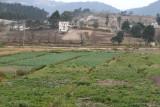 Plantaciones de Verdura Proximas a las Afueras de la  Zona Urbana