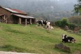 Paisaje en la Aldea Cercana Chinimay - Chuaxic