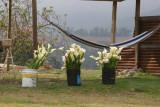 Venta de Flores (Cartuchos) en la Carretera a la Cabecera