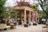 Sombra de Bugambilia en el Parque Central