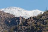 Snow Capped Catalinas