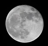 2010 01 31_0633--lune.jpg