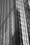 Tall, Shiny Windows