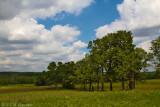 Richmond Greens Fields.