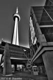 Rogers Center and CN Tower , Toronto BW