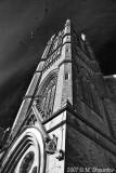 Birds Over United Church , Toronto BW
