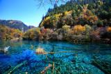 Five Flower Lake, Jiuzhaigou