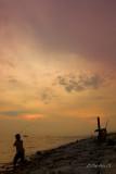 Angling at sunset (7138)