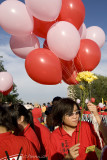 Balloons for sale (8153)