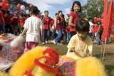 Children enjoying themselves (8231)