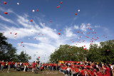 Freeing the doves and balloons (8245)
