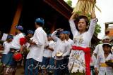 Musicians accompany the procession _MG_2098.jpg