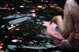 Frangant pool cleansing _MG_2490.jpg