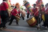 Lion dance (7872)