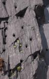 Slate quarries drill holes