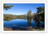 Yellowstone Serenity