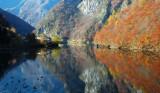 Fall in Pontet - Trentino