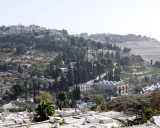 The Mount of Olives from The City Wall