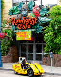 Rainforest Cafe, 145 Jefferson Street, San Francisco, CA , United States