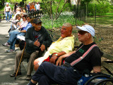 Retired Americans in a heated discussion on the benches at Central Park