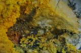 Sicile-îles Eoliennes-142.jpg
