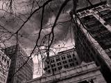 Gotham JAX