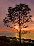 Choctawhatchee Bay at Sunset