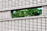 Window and Grid