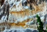 Natural Lace Art