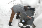 January 2, 2010 at the Pond