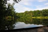 Ellen's Summer View