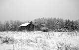 Winter Arrives in Rowe Woods