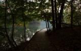 Autumn Pre-Dawn