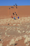 Climbing the dune, Sossusvlei