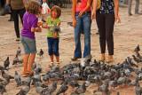 Sarajevo, Pigeon Square