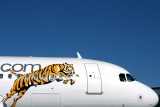 TIGER AIRWAYS AIRBUS A320 HBA RF IMG_8411.jpg
