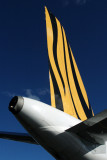TIGER AIRWAYS AIRBUS A320 HBA RF IMG_8414.jpg