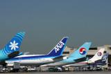 AIRCRAFT TAILS LAX RF IMG_1311.jpg