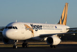 TIGER AIRWAYS AIRBUS A320 HBA RF IMG_1394.jpg
