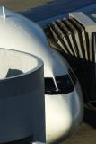 AIRCRAFT NOSE HND RF IMG_5521.jpg