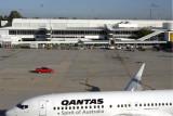 QANTAS BOEING 737 800 PER RF IMG_5822.jpg