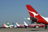AIRCRAFT TAILS BNE RF IMG_6590.jpg
