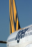 TIGER AIRWAYS AIRBUS A320 HBA RF IMG_0037.jpg