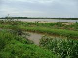 Santa Rosa Marsh