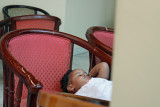 Sleepy Guest