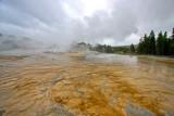 Upper Basin Area - Yellowstone