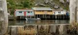 DSC01328 - Quidi Vidi Harbour