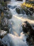 Bowering Park Waterfalls 035