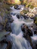Bowring Park Waterfalls 007